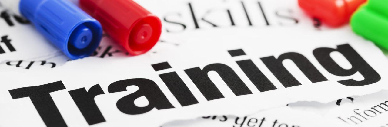 Workshop voor trainers door Mimicri Training